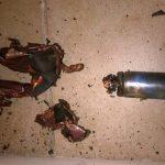 電子タバコが使用中に爆発!ビタボンは安全か公式に問い合わせてみた!